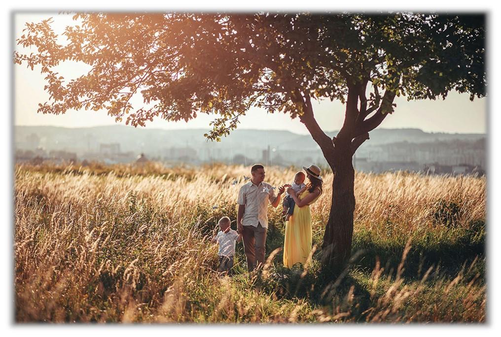 Family sitting in field under tree